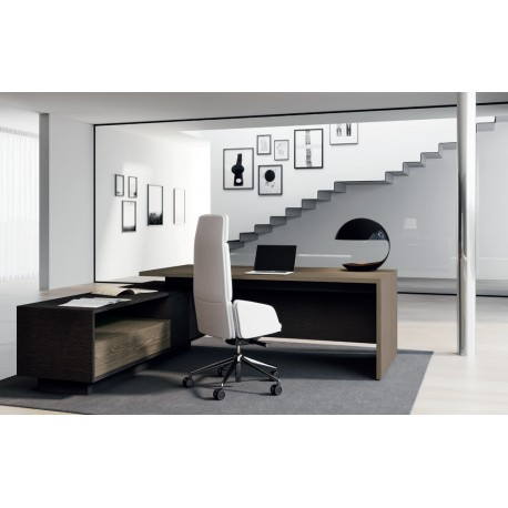 Elite ufficio direzionale